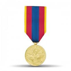 Médaille ordonnance défense nationale représentant une effigie de la République et de la mention gravée République française.