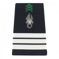 Paire de fourreaux d'épaule de Capitaine de l'Armée de Terre