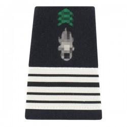 Grade de Colonel dans l'Armée de Terre sur fourreau