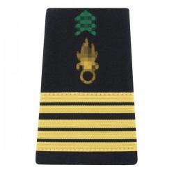 Fourreaux d'épaule réglementaires de Colonel dans l'Armée de Terre