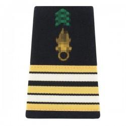 Fourreaux d'épaule de Lieutenant-Colonel