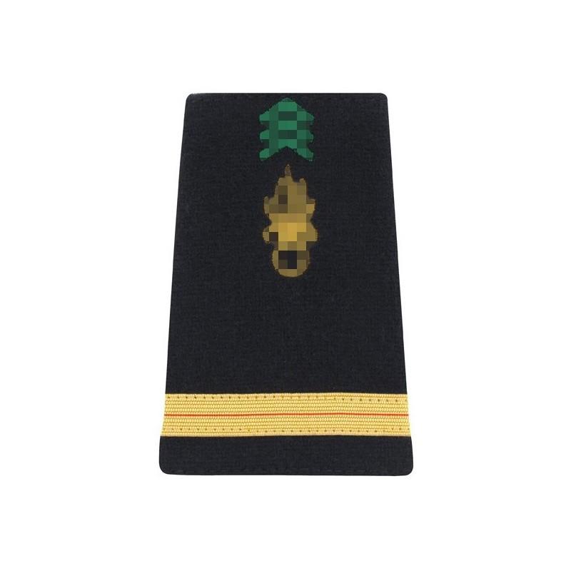 Galon d'Adjudant-chef Arme en Or de l'Armée de terre cousu sur une paire de fourreaux d'épaule